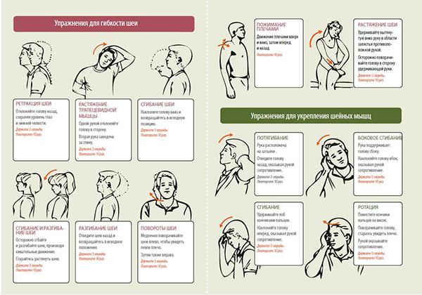 Упражнения для шейного отдела позвоночника во время обострений