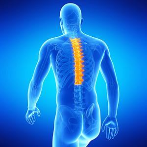 Межпозвоночная грыжа грудного отдела позвоночника: симптомы и лечение, признаки, фото